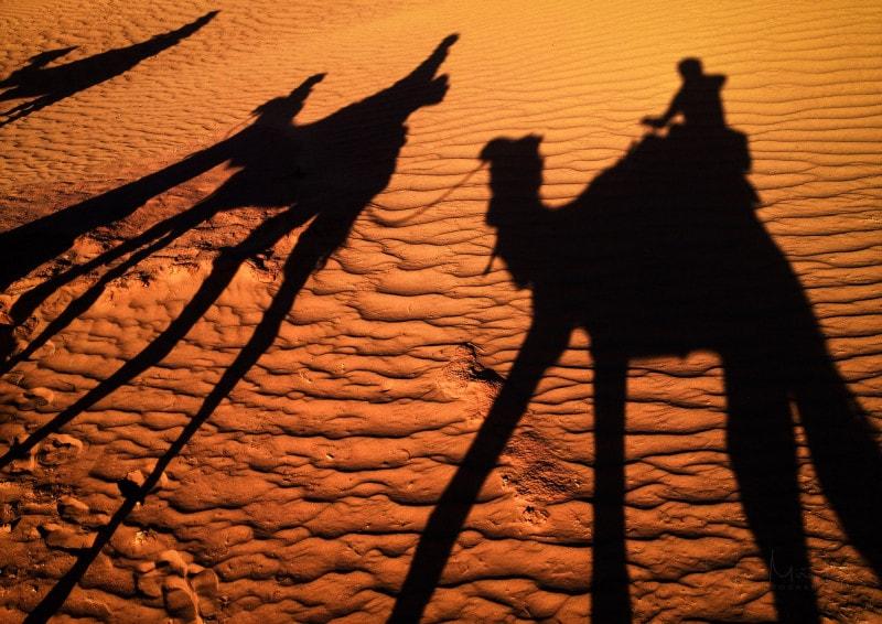 Shadow of camel caravana on Sahara desert