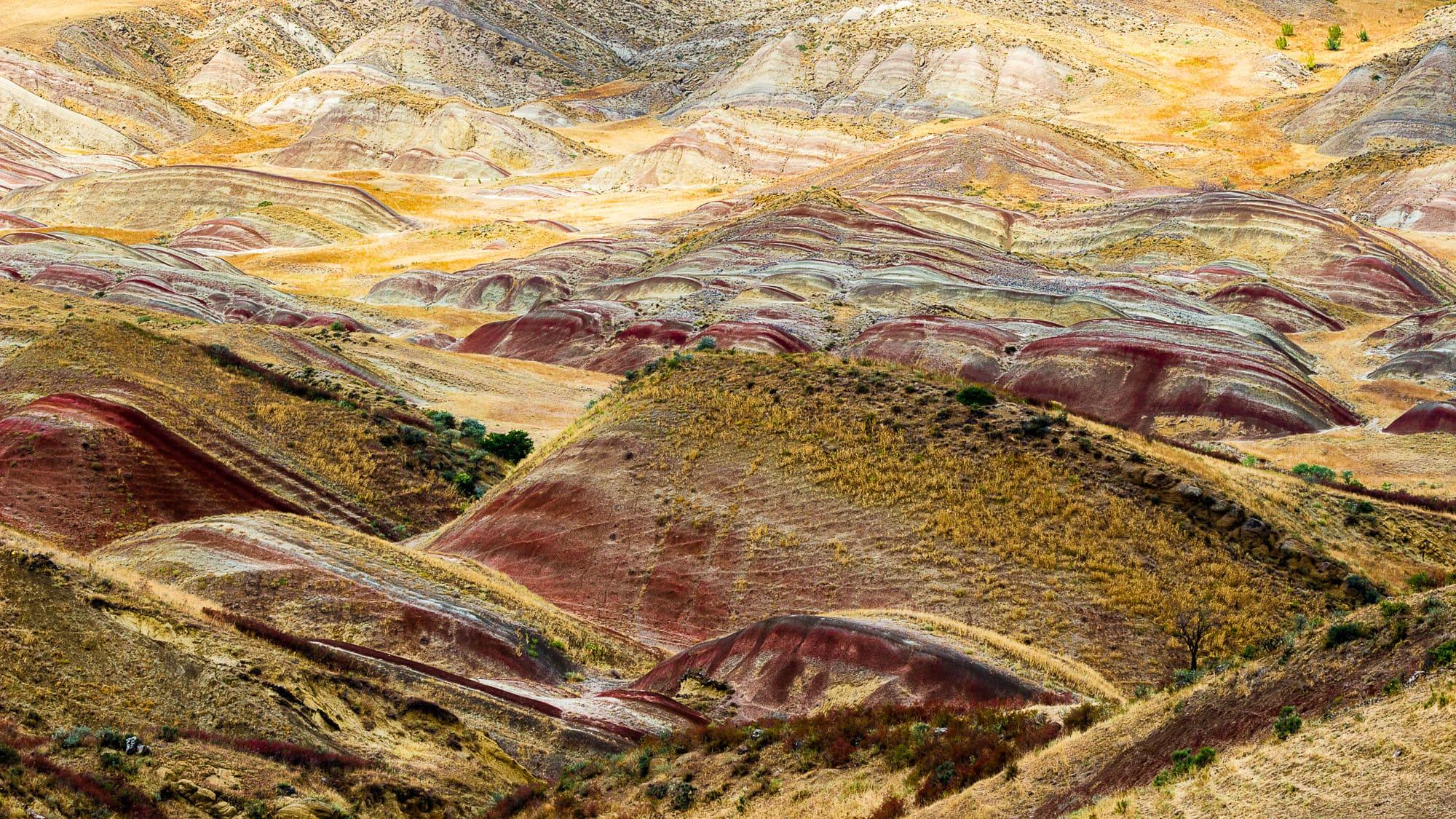 Landscape at Davit Gareja