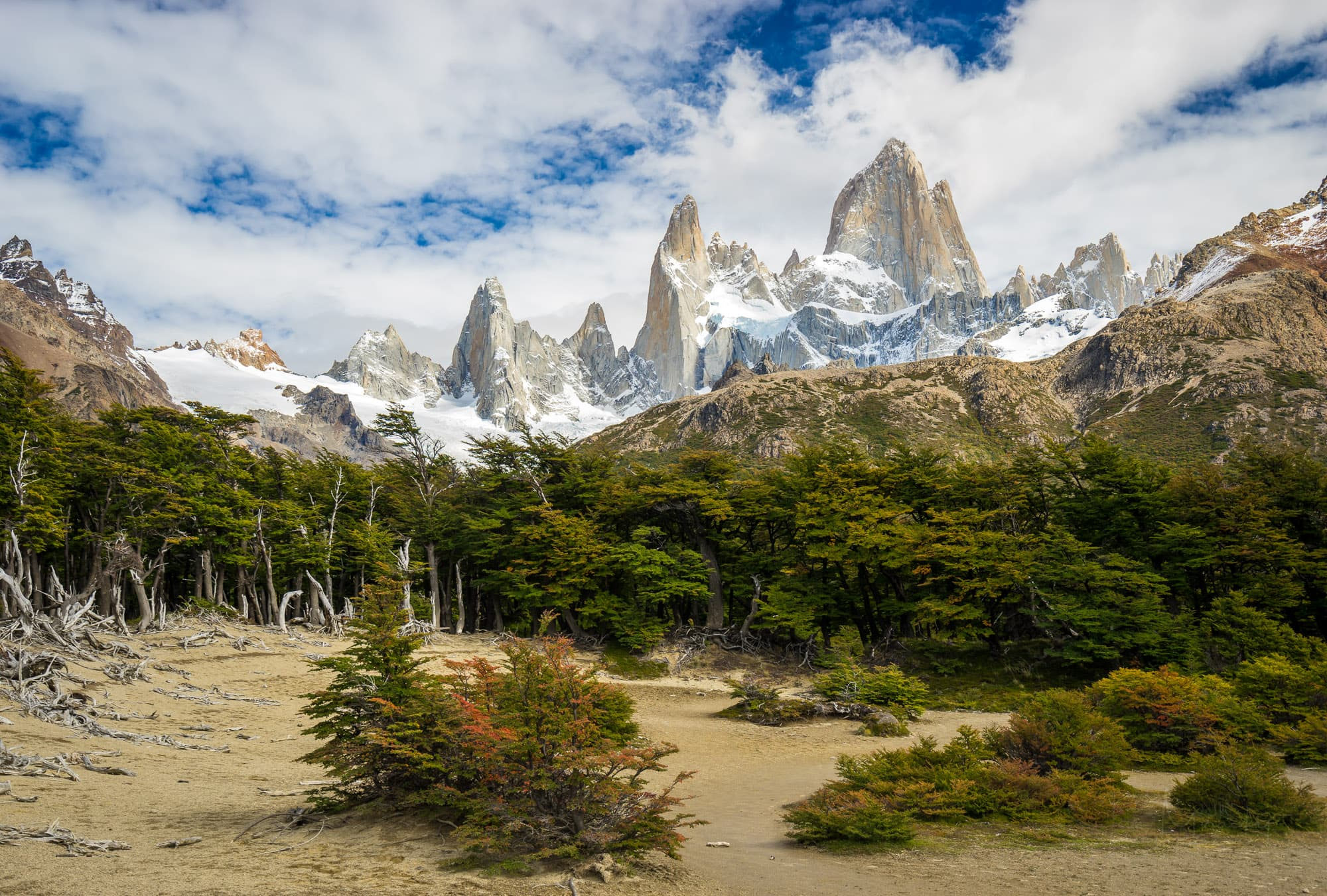 Mt. Fitz Roy with green trees close to Poincenot campground in summer on cloudy day