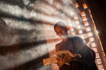 Novice monk reading a book